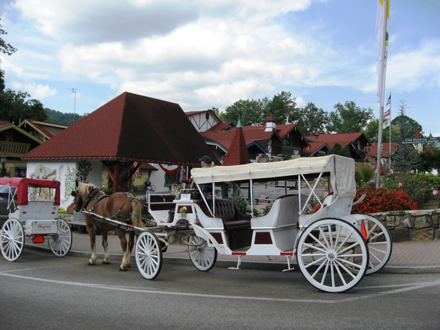 Horse and Buggy Rides in Helen GA