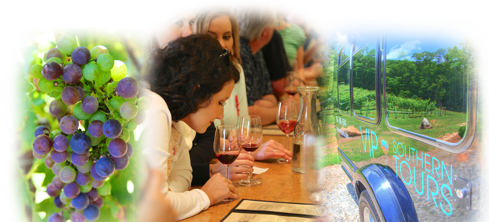 VIP Southern Wine Tours