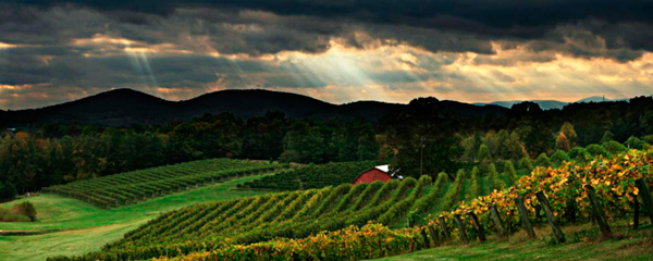 Three Sister's Vineyard and Winery near Helen, Ga.