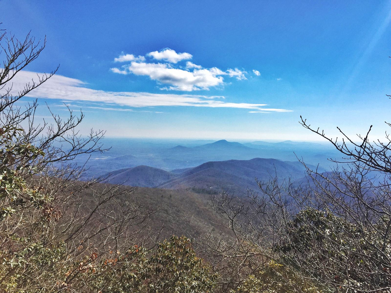 View from the summit on Tray Mountain Rd